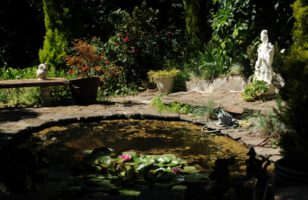 Do You Need Planning Permission For a Garden Pond?